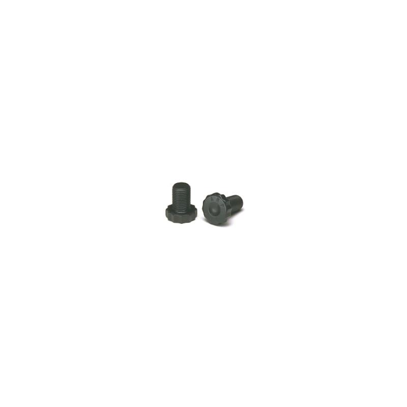 LS1/GEN3 FLYWHEEL BOLT 11mm (6x)